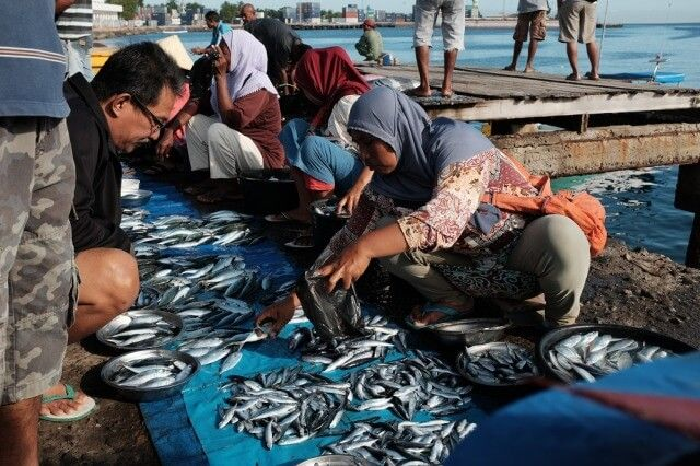 MATA KAIL: Creative Solutions for Sustainable Consumption and Production of Fish in East Nusa Tenggara