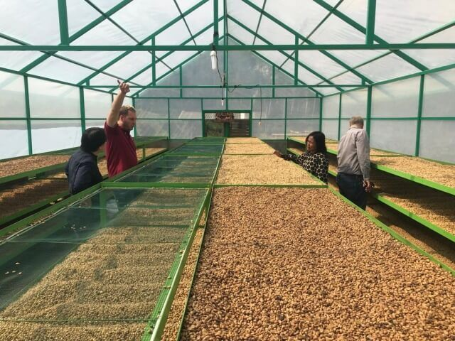 What It Takes to Replicate: Lessons Learned from a Solar Dryer Experiment in Bali