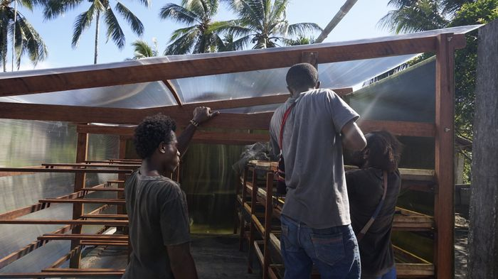Cacao Solar Dryer Re-design for the Papuan Context