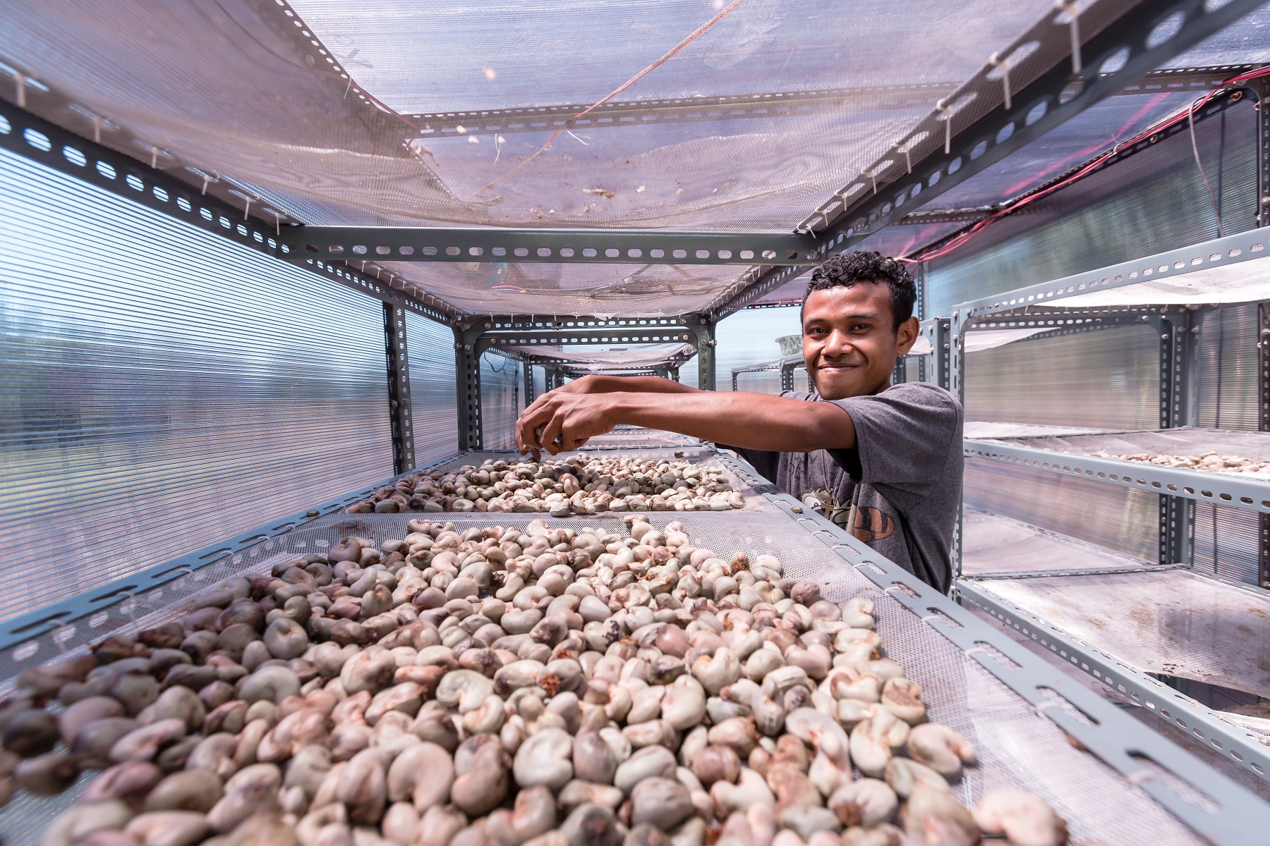 Improved Drying Technology Alone does not Guarantee Higher Prices to Smallholder Farmers, Market Access is Key