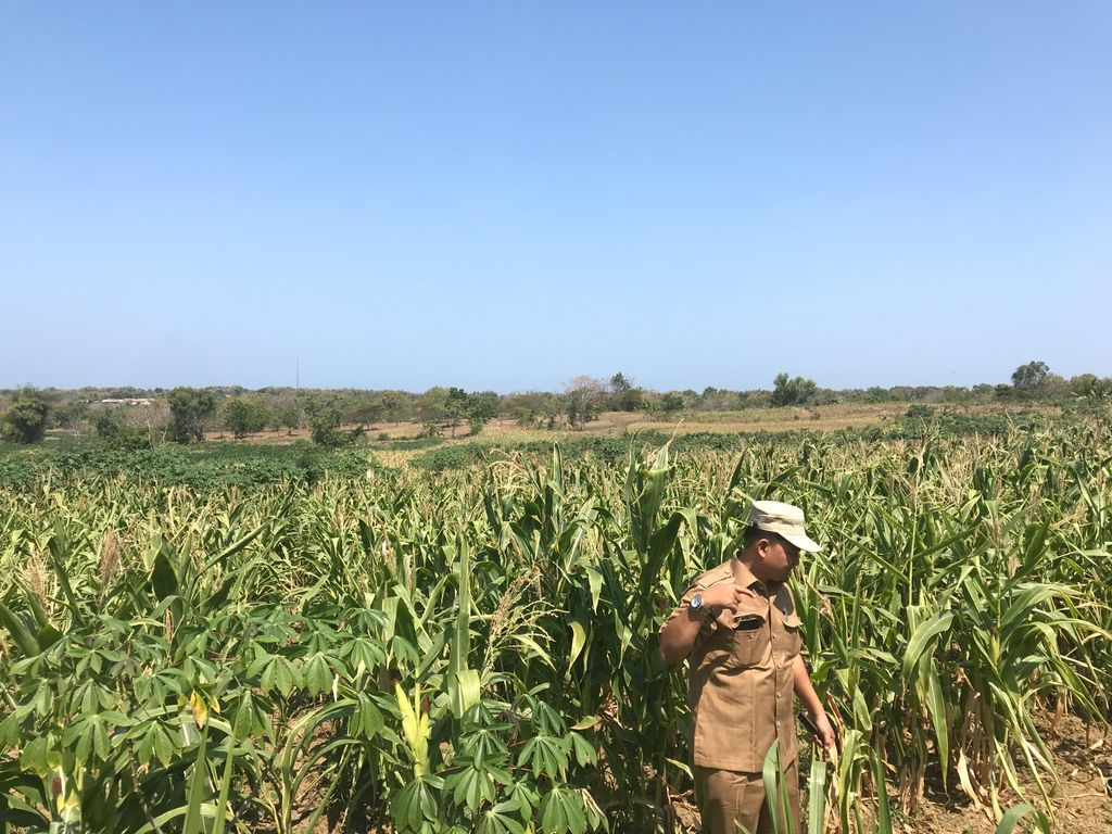 Evaluating Training Impact Provided to Government Officials in Improving Farmers' Income