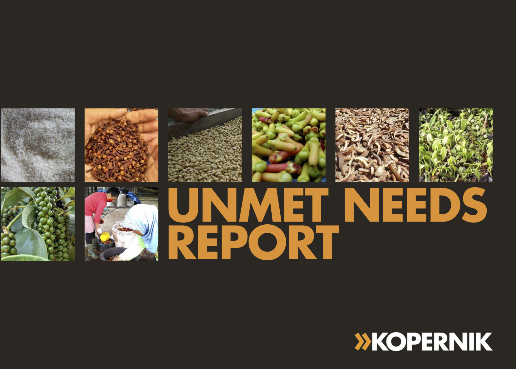 Unmet Needs Report in Indonesian Smallholder Farming